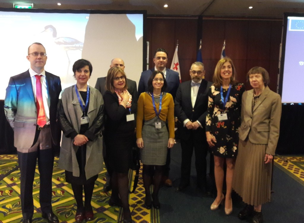 "EU funded Twinning Project ""Enhancing Accounting and Audit Quality in Georgia"""